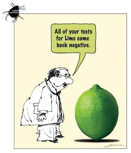 All Natural Tick Spray, Cedar Tick Spray, Livestock Tick Spray, All-Natural Tick and Bug Repellent Spray, Natural Tick, Mosquito and Insect Repellents